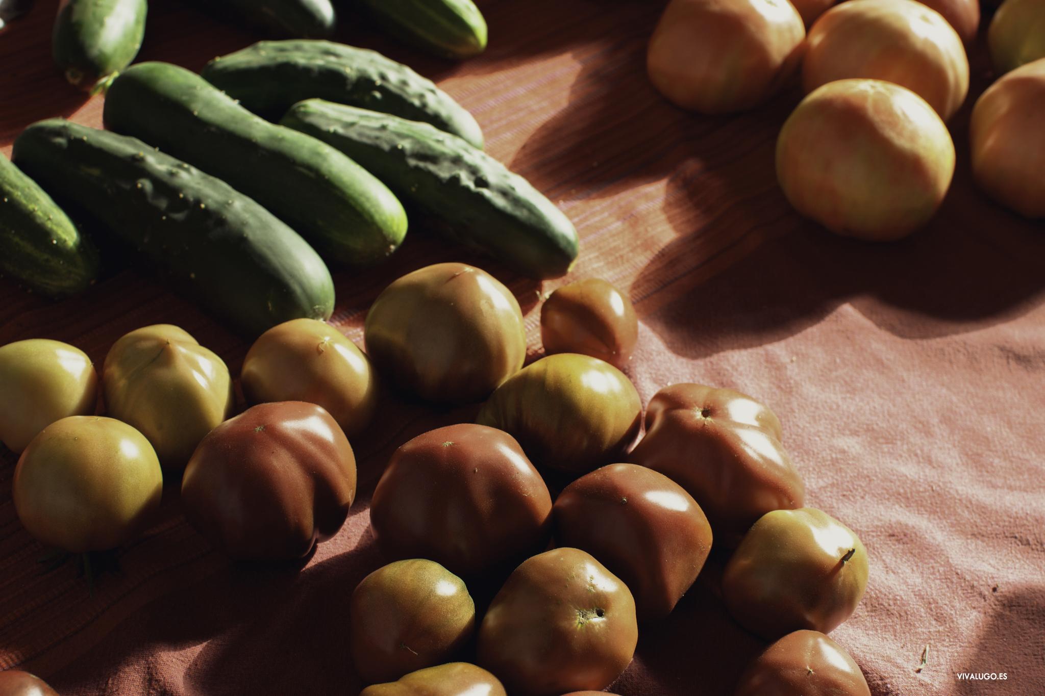 Mercado da Terra en Lugo